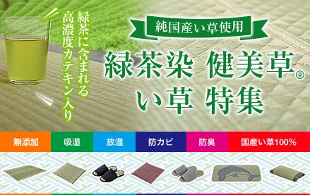 純国産い草使用 緑茶染 健美草 い草特集